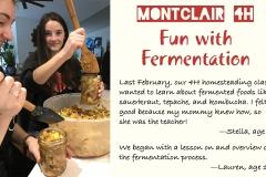 1 Fermentation