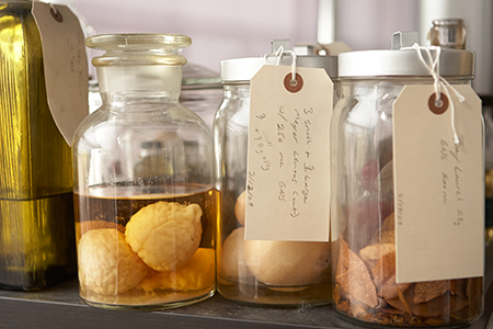 gricultural products and foraged items line the shelves of the lab at the St. George Spirits.