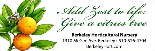 Berk-Hort-website-ad