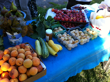 Berkeley crop swaps, organized by Transition Berkeley, feature an array of fruits, veggies, and herbs plus live music .