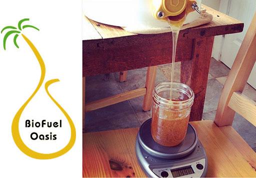 Biofuel-Oaisis-Workshops