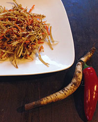 Burdock is a key ingredient in this healthful and delicious autumn salad. Photo courtesy of Ohlone Herbal Center.