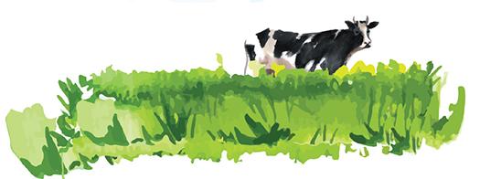 Cow-grass