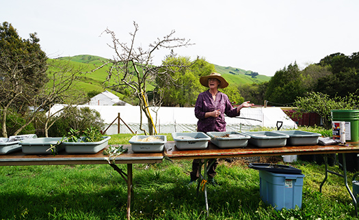 Learneffective composting strategies and the basics of the Soil Food Web at GreenFriends Farm.