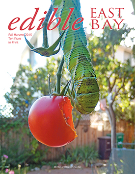 EEB41-cover-275
