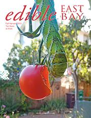 EEB41-cover-SM