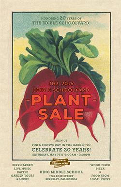 Edible-Schoolyard-plant-sale
