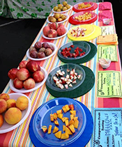 Fancy-Fruit-Comparative-Tasting_Bayfair-(1)