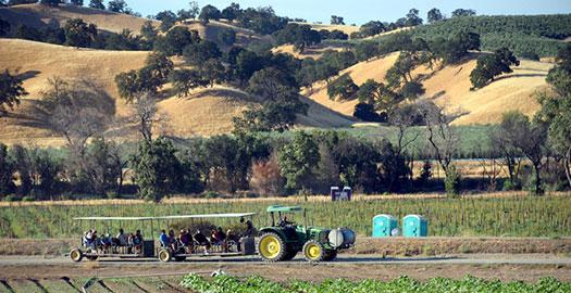 Farm-Fresh-to-You2