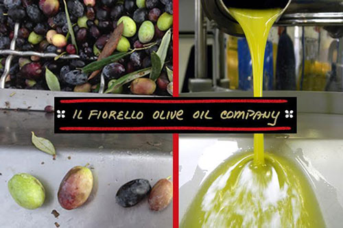 Get a close look at an olive mill in action during Il Fiorello's free tour. Photos courtesy of Il Fiorello.