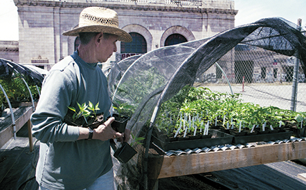 At left: Peggy Kass tends her seedlings in front of Oakland's historic 16th Street Station.