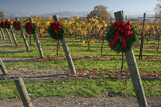 LivermoreValleyWreaths-S-Kelly-(2)