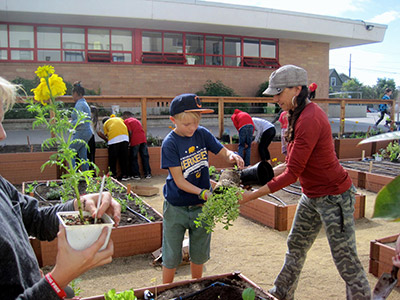 Students and staff at Longfellow Middle School at work in their garden. Photo courtesy of Berkeley Public SchoolGardening & Cooking Program.
