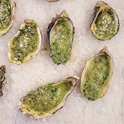 Oysters-crop