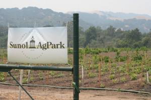 Sunol-Ag-Park