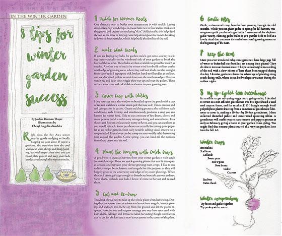 Tips-for-Winter-garden