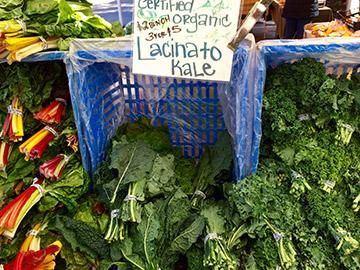 Tomatero-Farm-Kale_Katie-Gatlin
