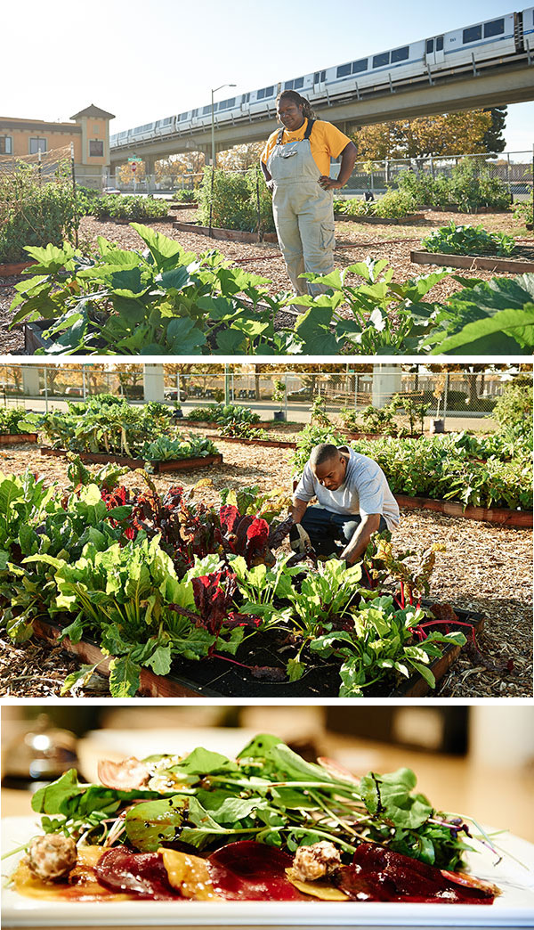 Former Black Panther Elaine Brown enlisted Kelly Carlisle (upper right), an ex-Navy officer, East Oakland resident, and Master Gardener, to manage West Oakland Farms. In the lower photo, West Oakland Farms' arugula embellishes the Beets Jubilee Salad at Picán Restaurant, the farm's first culinary client.