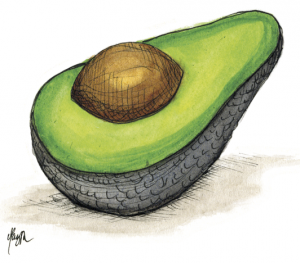 avocadoes 1