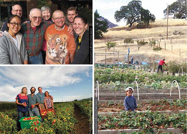 Upper left: Full Belly Farm founders Judith Redmond, Andrew Brait, Dru Rivers, and Paul Muller. Full Belly won the prestigious Aldo Leopold Conservation Award in 2014. Lower left and on the right: At Buttercup Farms Garden in Clayton, people from all walks of life participate in running a CSA program designed to serve the nearby community.