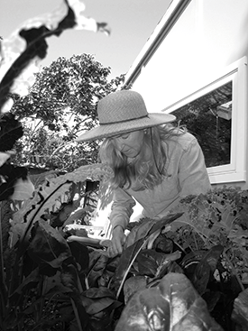 Karen Pertschuk weeding her raised-bed vegetable garden, which includes a variety of lettuce, kale, and spinach.