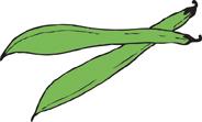 greenbeens