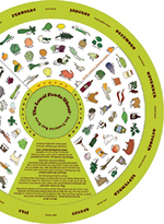 local_foods_wheel