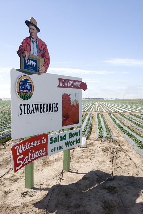 salinasstrawberrysign