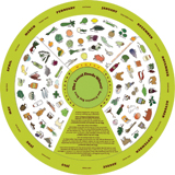 sf_local_foods_wheel