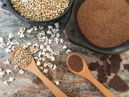 Sorghum (left) is an ancient grain that's ground for flour in India, Africa, China, and the Americas. Its popped kernels are tiny and tasty. Minuscule grains of teff (right) are ground into flour that's used to make fresh Ethiopian injera and dried injera chips (derkosh).