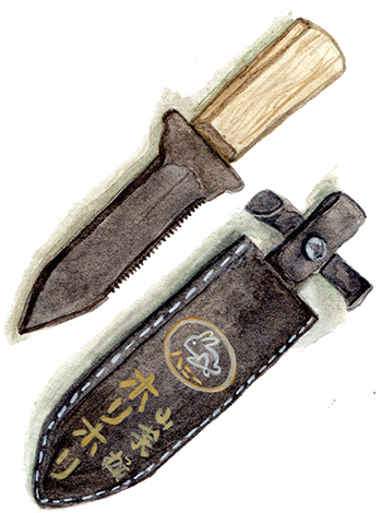Traditional Japanese gardening tools, like this hori hori, can be found at Hilda Tool in Berkeley. (Illustration by Mary Brown)
