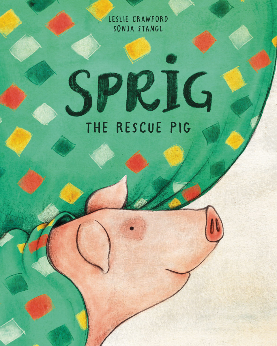 Sprig-the-rescue-pig