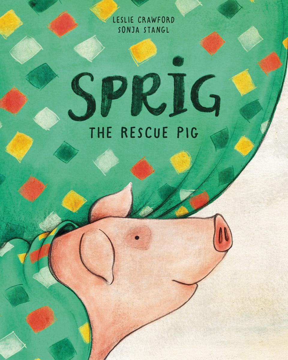 Sprig-the-rescue-pig
