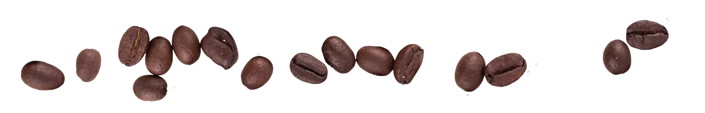 coffee-beans-row-1